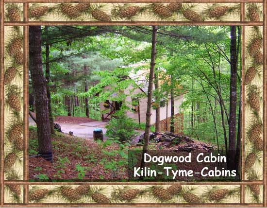 Dogwood Cabin in Blairsville, Georgia