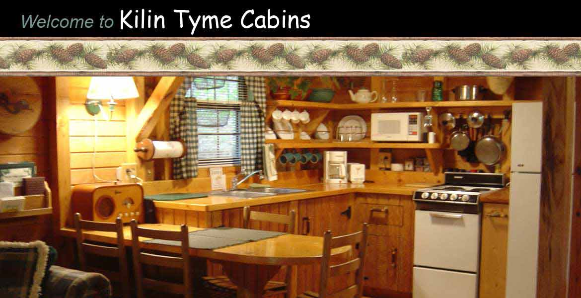 Kilin Tyme Cabins - kitchen